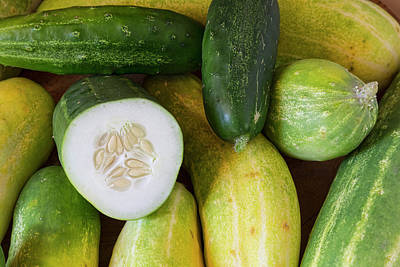 Photograph - Cucumber Seeds by James BO Insogna