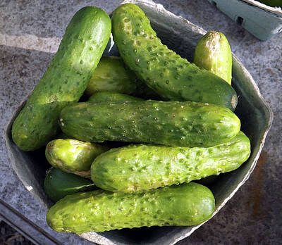 Photograph - Cucumbers  by Joyce Wasser