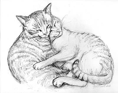 Drawing - Cuddly Cats by Deborah Willard