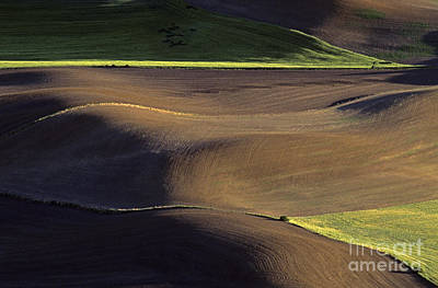 Photograph - Cultivated Fields  by Jim Corwin