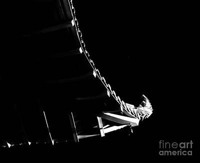 Photograph - Cultural Light by Fei Alexander