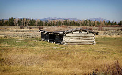 Photograph - Cumminghams Cabin by Shirley Mitchell