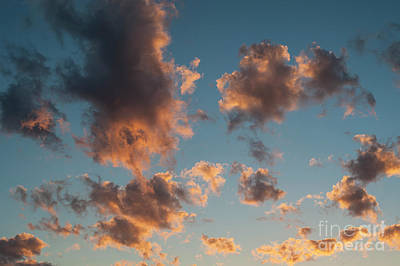 Photograph - Cumulus Clouds With Sunset Light by Jim Corwin