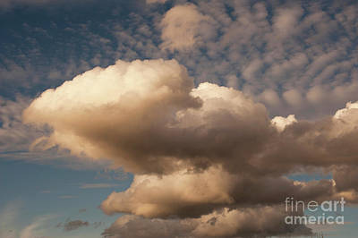 Photograph - Cumulus With Vertical Growth by Jim Corwin