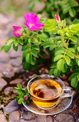 Photograph - Cup Of Tea With Rose by Yana Shonbina