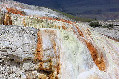 Photograph - Cupid Spring At Mammoth Hot Springs by Louise Heusinkveld