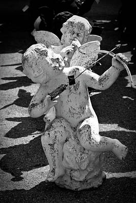 Angel Photograph - Cupid by Teresa Mucha