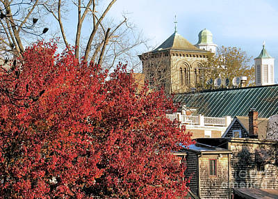 Photograph - Cupolas Steeples And Rooftops by Janice Drew