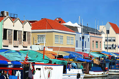 Photograph - Curacao Fish Market by Living Color Photography Lorraine Lynch