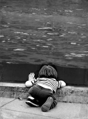 Photograph - Curiosity by Brenda Conrad