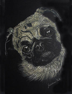 Mixed Media - Curiosity Of The Pug by Jessica Kale