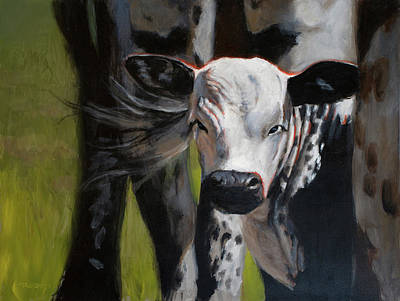 Curious Calf Art Print