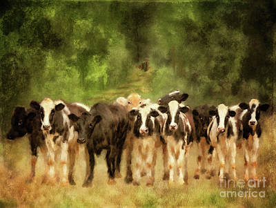 Digital Art - Curious Cows by Lois Bryan