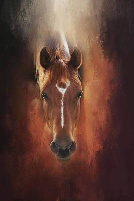 Curious Gaze  Art Print by Toni Hopper