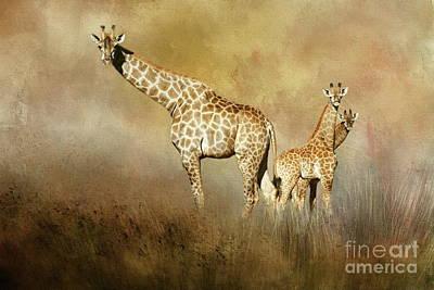 Photograph - Curious Giraffes by Myrna Bradshaw