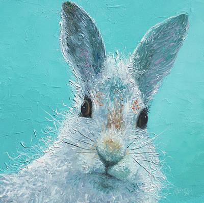 Curious Grey Rabbit Art Print