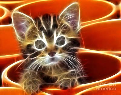 Curious Kitten Art Print by Pamela Johnson