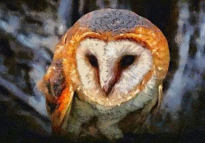 Digital Art - Curious Owl by Charmaine Zoe