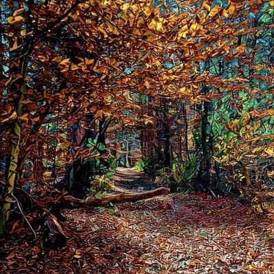 Digital Art - Curious Path In Autumn by Richard Hinds