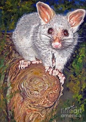 Curious Possum  Art Print