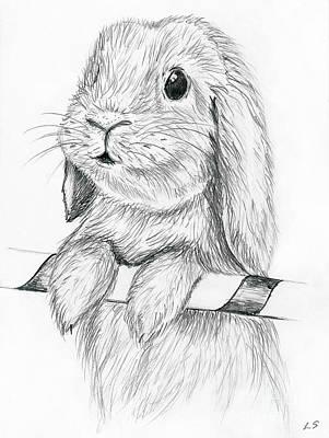 Painting - Curious Rabbit by Sergey Lukashin