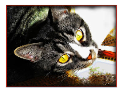 Photograph - Curiousity by Joan  Minchak