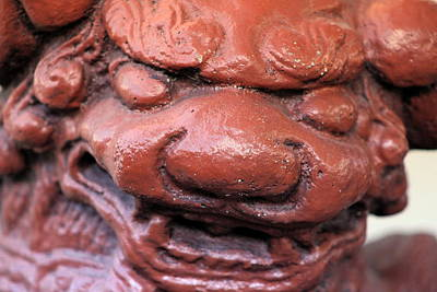 Staff Picks Judy Bernier - Currant Red Japanese Foo Dog by Colleen Cornelius