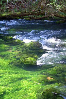 Stream Lanscape Photograph - Current River 8 by Marty Koch