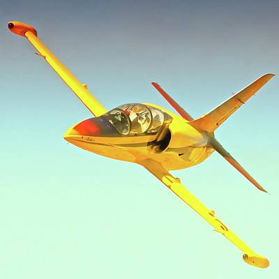 Curt Brown And  L-39 Race 54  Robin 1 Original by Gus McCrea