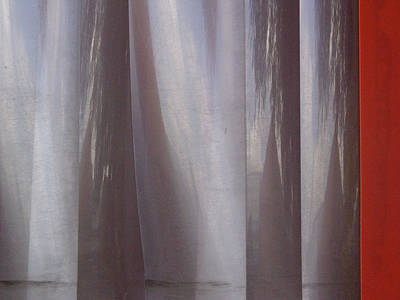 Photograph - Plastic Curtain Time by Ross Odom