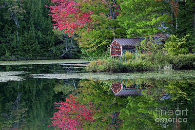 Photograph - Curtis Pond Autumn  by Alan L Graham