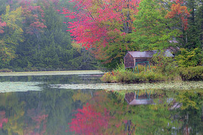 Photograph - Curtis Pond Misty Autumn by Alan L Graham