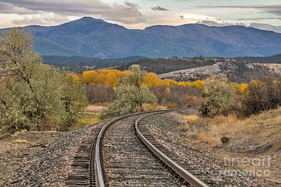Photograph - Curve In The Tracks In Autumn by Sue Smith