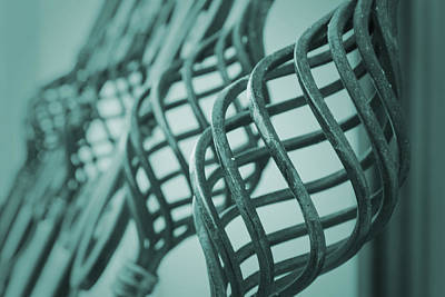 Photograph - Curved Iron Fence by Vlad Baciu