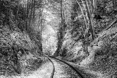 Photograph - Curves Ahead Black And White by Debra and Dave Vanderlaan