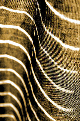 Art Print featuring the photograph Curves And Folds by Todd Blanchard