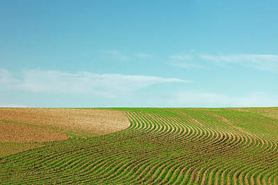 Contour Farming Photograph - Curvy Rows by Todd Klassy