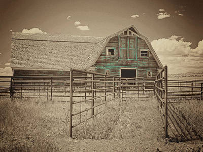 Photograph - Custom Chiser 55 Ranch by Amanda Smith