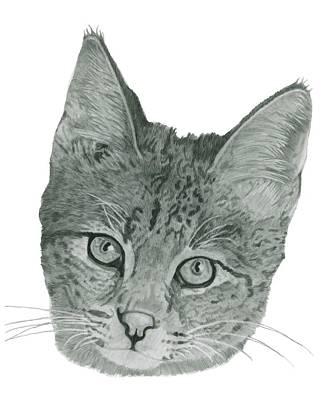 Custom Pet Portrait-huge Art Print by Megan Johnson