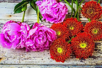 Photograph - Cut Garden Flowers by Garry Gay