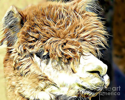 Digital Art - Soft And Shaggy by Kathy M Krause
