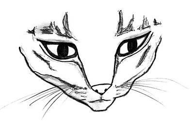 Drawing - Cute Cat Drawing by Matt Harang