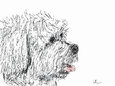 Digital Art - Cute Dog by Diane Chandler
