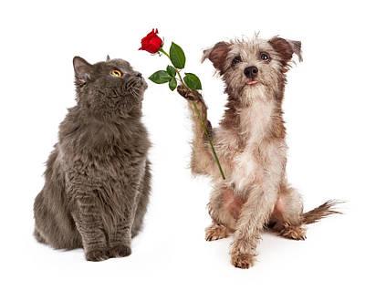 Cute Dog Giving Flower To A Cat Art Print by Susan Schmitz