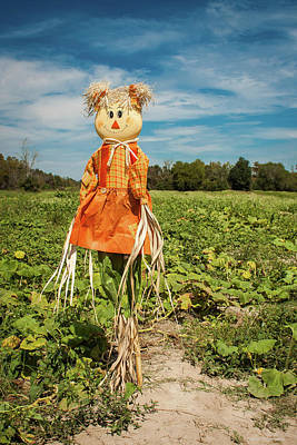 Photograph - Cute Scarecrow by Debra Forand