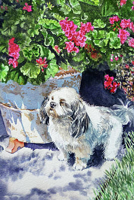 Watercolor Pet Portraits Wall Art - Painting - Cute Shih Tzu Dog Under Geranium  by Irina Sztukowski