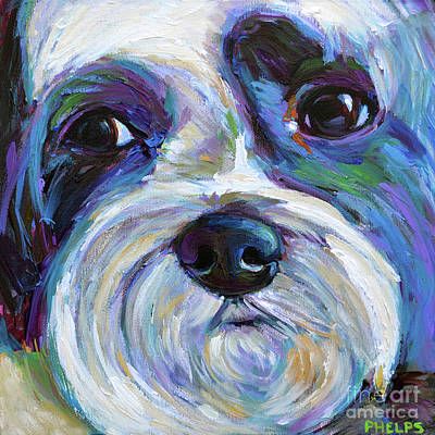 Painting - Cute Shih Tzu Face by Robert Phelps