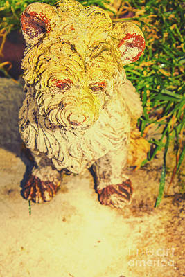 Photograph - Cute Weathered White Garden Ornament Of A Dog by Jorgo Photography - Wall Art Gallery