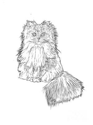 Cutest Kitten On The Web Original