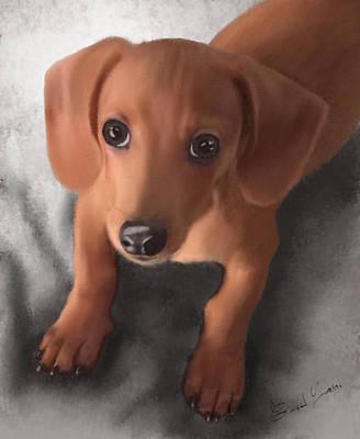Cute Dachshund Digital Art - Cutest Pup Ever by Sannel Larson